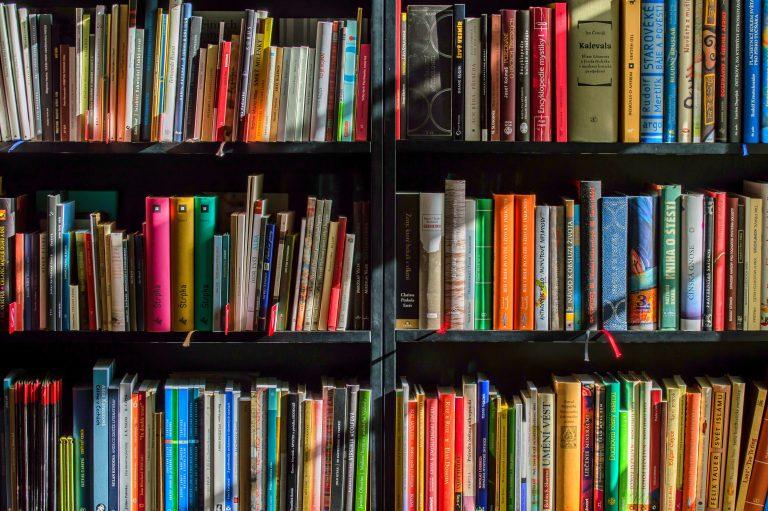 «Согласие» просит президента вернуть Закон о высших школах на повторное рассмотрение в Сейм